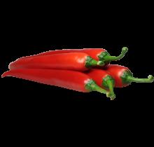 WLS 2600 | chili-peper